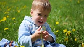 Das glückliche Kind sitzt auf einem Gebiet des Löwenzahns Spiel des Kindes im Freien stock video