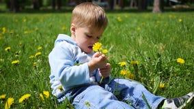 Das glückliche Kind sitzt auf einem Gebiet des Löwenzahns Spiel des Kindes im Freien stock video footage