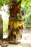 Das Glauben an Geist von Thailand-Banyanbaum schmückte mit Bändern Stockfotografie
