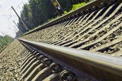 Das Gleis durch den Kieferwald Stockbilder
