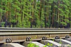 Das Gleis durch den Kieferwald Stockfotos
