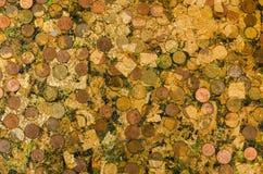 Das Goldblatt des Hintergrundes lizenzfreie stockfotos