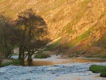 Das goldene Tal und der Fluss Stockfotos