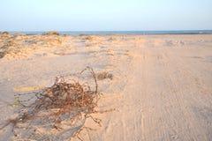 Das Golf von Aden Lizenzfreies Stockfoto