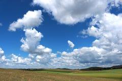 Das grüne Feld und der blaue bewölkte Himmel Lizenzfreies Stockfoto