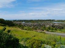 Das grüne Teil der Bucht von Inseln Stockfotos