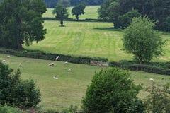 Das Gras ist auf dem otherside, innerhalb der Sandsteinspur, in Cheshire grüner Lizenzfreie Stockbilder