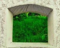 Das Gras ist auf der anderen Seite grüner Stockbilder