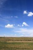 Das Grasland Stockbilder