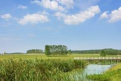 Das Grasland und die Brücke Stockfoto