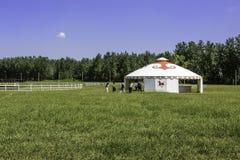 Das Grasland und Mongolian yurt lizenzfreie stockfotos