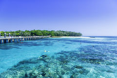 Das Great Barrier Reef in Queensland-Staat, Australien Stockfotos