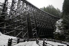 Das großartige alte Kinsol-Gestell am schneebedeckten Tag, Vancouver Island Lizenzfreie Stockfotografie