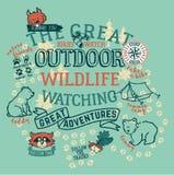 Das große Aufpassen der wild lebenden Tiere im Freien Stockfotos
