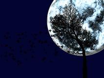 Das große Mond- und Baumschattenbild auf Hintergrund Lizenzfreies Stockfoto
