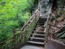 Das hölzerne Treppenhaus, das Bushkill sich nähert, fällt in Ost-Pennsylvania Lizenzfreie Stockbilder