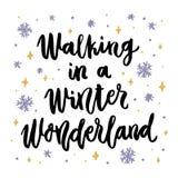 Das Handzeichnungszitat: In ein Winter-Märchenland, in einer modischen kalligraphischen Art gehen stock abbildung
