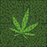 Das Hanfblatt, das mit Grün hergestellt wird, quadriert Hintergrundschablone Lizenzfreie Stockfotos