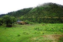 Das Haus auf dem Fuß des Hügels lizenzfreies stockbild