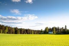 Das Haus auf einem grünen Feld an einem sonnigen Tag Stockfoto