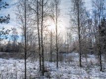 Das Haus in einem Winterholz Lizenzfreie Stockbilder