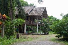 Das Haus im Dschungel Stockfoto