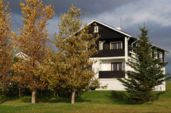 Das Haus und der Baum Stockbild