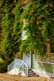Das Haus wand mit Campsis-Kriechpflanze auf der Straße des kalten Brunnens stockfoto