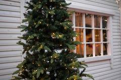 das Haus-Weihnachtsbaum Stockfotos