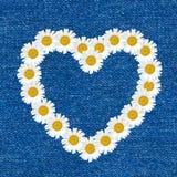 Das Herz, das vom Gänseblümchen gemacht wird, blüht nahtloses Muster auf Jeanshintergrund Stockbilder
