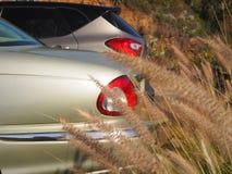 Das hintere Teil von zwei silbrigen großen, noblen Autos lizenzfreie stockfotos