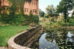 Das historische Schloss bedeckt mit Lianen Stockbilder