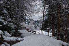 Das Holz an einem Wintertag Stockfotografie