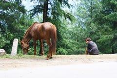 Das HorseBoy Stockfotos