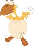 Das Huhn brütete vom Ei aus vektor abbildung