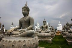 Das hundert von Buddha-Statuen Stockfotografie