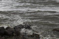 Das IJsselmeer dunkel und windig lizenzfreie stockfotografie