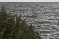 Das IJsselmeer dunkel und windig stockfotos