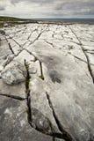 Das irische Burren Stockbilder