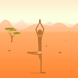 Das Jogi, das im Baum steht, wirft in der Wüste auf Lizenzfreie Stockfotos