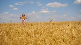 Das junge Mädchen, das in den Händen eines Weizenfeldes steht, richtet Haar gerade und lächelt stock video