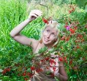 Das junge schöne Mädchen nahe zu einem Busch einer roten Johannisbeere. Porträt an einem sonnigen Tag Lizenzfreie Stockfotografie