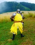 Das Kämpfen adelt auf grüner Wiese in den historischen Kostümen Stockfotografie