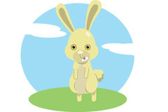 Das Kaninchen Stockfoto