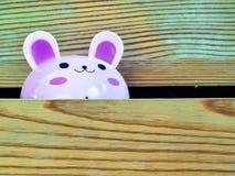 Das Kaninchen schaut aus dem Wandschrank heraus Stockfotografie