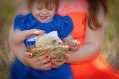 Das Kind ber?hrt die Dorne des Igelen Spielen des kleinen M?dchens lizenzfreie stockbilder