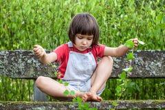 Das Kind, das mit Efeu spielt, hält auf, um Natur im Garten zu lernen Stockbild