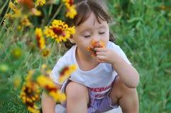 Das Kind eine riechende Blume Stockfoto