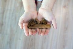 Das Kind hält in seinen Händen eine Zimtstange, Jamaikapfeffer, Ingwer, Sternanis, lizenzfreies stockfoto