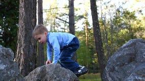 Das Kind im Herbst Parkspaß, der, gehend in die Frischluft spielt und lacht Der Junge klettert große Steine, er mag stock video